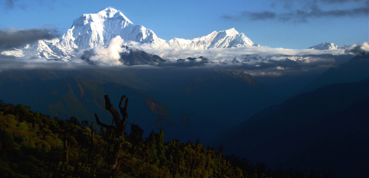 Dhaulagiri : la montagne blanche. Circuits, tours, découverte, trek, trekking, rando...