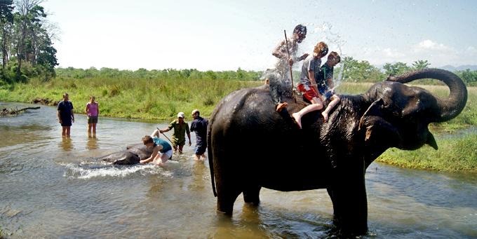 Bain des éléphants, Chitwan